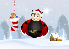 Ladybug at Christmas Royalty Free Stock Photos