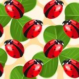 Ladybug and clover seamless Royalty Free Stock Image