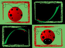 Ladybug collage. Collage or set of four backgrounds with red lady bugs Royalty Free Stock Photos