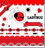 Ladybug Collection Royalty Free Stock Photos