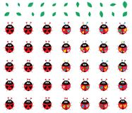 Ladybug colorful weird set. This illustration is design and drawing ladybug colorful weird set in isolated white color background object Vector Illustration