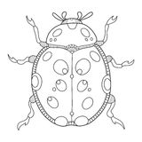 Ladybug coloring book vector illustration Stock Photography