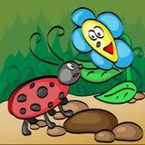 Ladybug con la flor Imagen de archivo