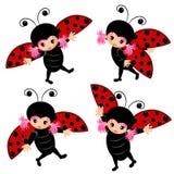 Ladybug costume cartoon set Royalty Free Stock Images