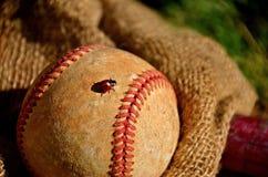 Ladybug Crawls on a Baseball. An old baseball with a ladybug crawling between the seams lies on a gunny sack Stock Images