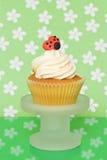 Ladybug Cupcake Stock Images