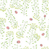 Ladybug and cute flowers seamless pattern Royalty Free Stock Images
