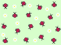 Ladybug and daisy background. Ladybugs and white daisies on the green background Royalty Free Stock Photos