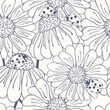 Ladybug and daisy outline seamless pattern Royalty Free Stock Photos