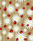 Ladybug and daisy - seamless texture. Ladybug and daisy on a striped background - seamless texture Stock Photo