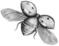Ladybug di volo isolato Immagine Stock