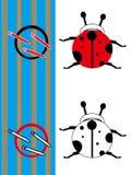 Ladybug do whit do esboço do livro de coloração Ilustração do Vetor