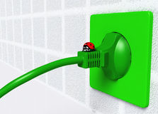 Ladybug on ecological plug Stock Image