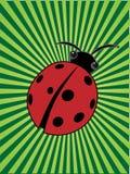 Ladybug en el centro de las vigas verdes del rayo ilustración del vector