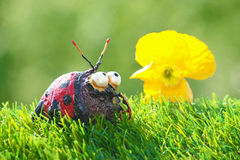 Ladybug figure and poppy Royalty Free Stock Images