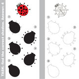 Ladybug. Find true correct shadow. Ladybug with different shadows to find the correct one. Compare and connect object with it true shadow. Easy educational kid Stock Images