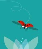 The ladybug flies. Ladybug flies over the flower, minimalist image Royalty Free Stock Photo