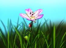Ladybug on a flower. Reflection of a ladybug in a dew drop. Illustration Stock Image
