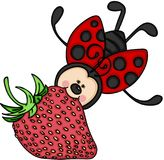 Ladybug flying with a strawberry Royalty Free Stock Photo