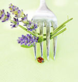 Ladybug on fork with lavender, table decoration Royalty Free Stock Photos