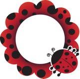 Ladybug frame royalty free stock photo