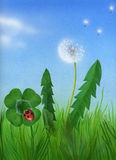 Lucky spring with ladybug and four-leaved clover Stock Photos