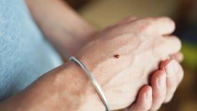 Ladybug on hand. Ladybug crawling on a man`s hand, close-up stock photos