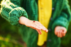 Ladybug in hands. Royalty Free Stock Photo