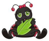 Ladybug hold a leaf Stock Image