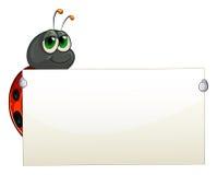 A ladybug holding an empty signage Royalty Free Stock Image