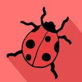 Ladybug icon Royalty Free Stock Photography