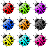 Ladybug icon set Stock Photography
