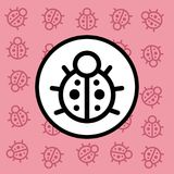 Ladybug icon sign and symbol on pink background Stock Photos