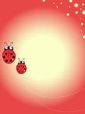 Ladybug illustration Royalty Free Stock Photography