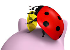 Ladybug inserts a coin Royalty Free Stock Photo