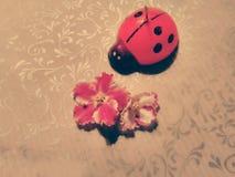 LadyBug [02] imagem de stock