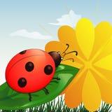 Ladybug on leaf. With yellow flower in cartoon style Stock Illustration
