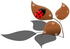 Ladybug on leaves royalty free stock image