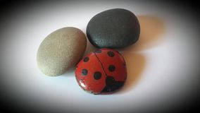 The ladybug made of stone. royalty free stock photo