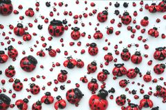 Ladybug. Many wooden ladybugs in the fridge Stock Photo