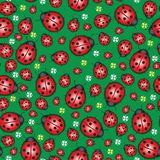 Ladybug meadow pattern Royalty Free Stock Photos