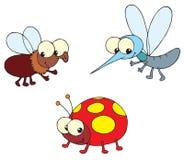 Ladybug, mosca e mosquito ilustração royalty free