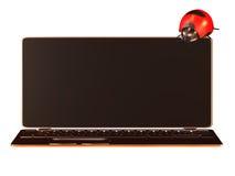 Ladybug with nice slim NB Royalty Free Stock Photos