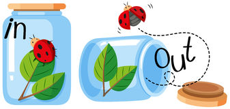 Ladybug in and out of the jar. Illustration vector illustration