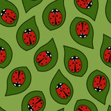 Ladybug. Pattern- ladybug on a green leaf royalty free illustration