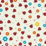 Ladybug pattern Royalty Free Stock Images