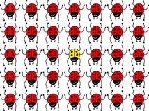 Ladybug perso royalty illustrazione gratis