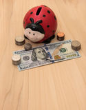 Ladybug Piggy Bank with Money. A ladybug piggy bank surrounded by coins and hundred dollar bill Royalty Free Stock Photo