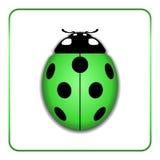 Ladybug realistic cartoon icon Stock Photo