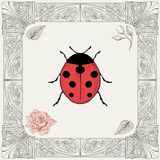Ladybug and rose drawing Stock Photos